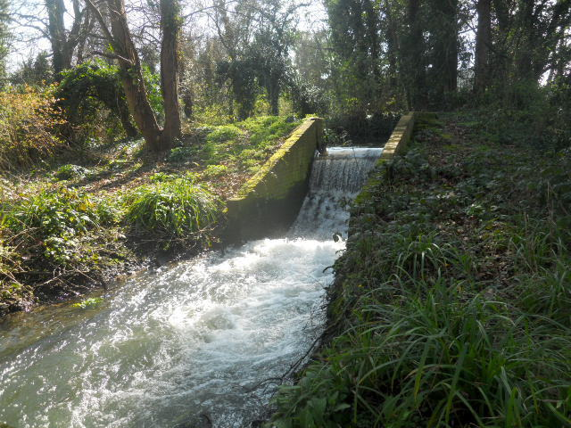 poulter park, waterfall