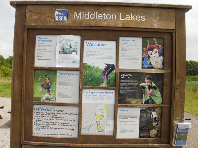 Middleton Lakes, RSPB, nature reserve, Tamworth, herons