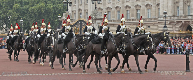 chaging of the guard, buckingham palace, queen's life guard