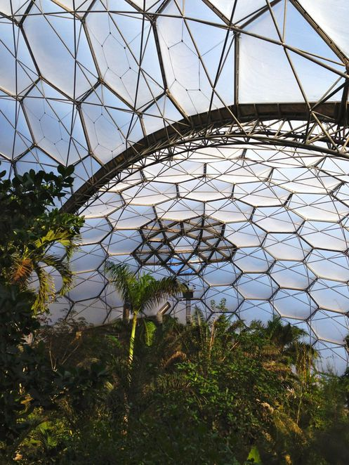 eden project, cornwall, education, plants, nature, forest, conservation, charity, biomes, domes