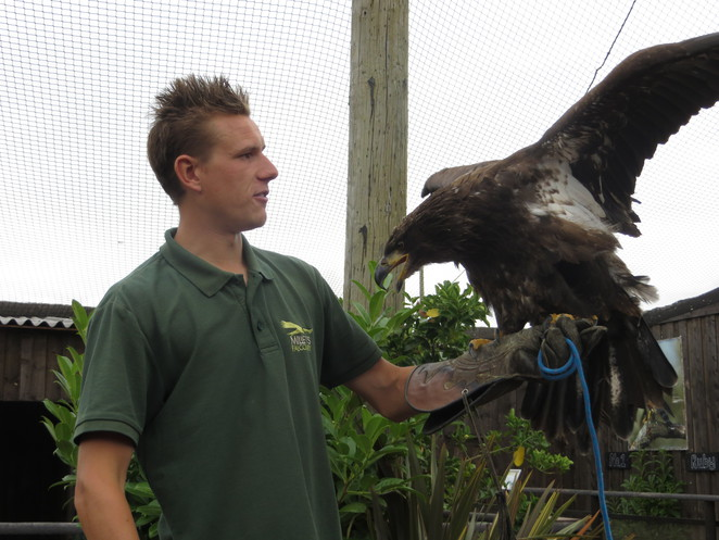 millets farm falconry