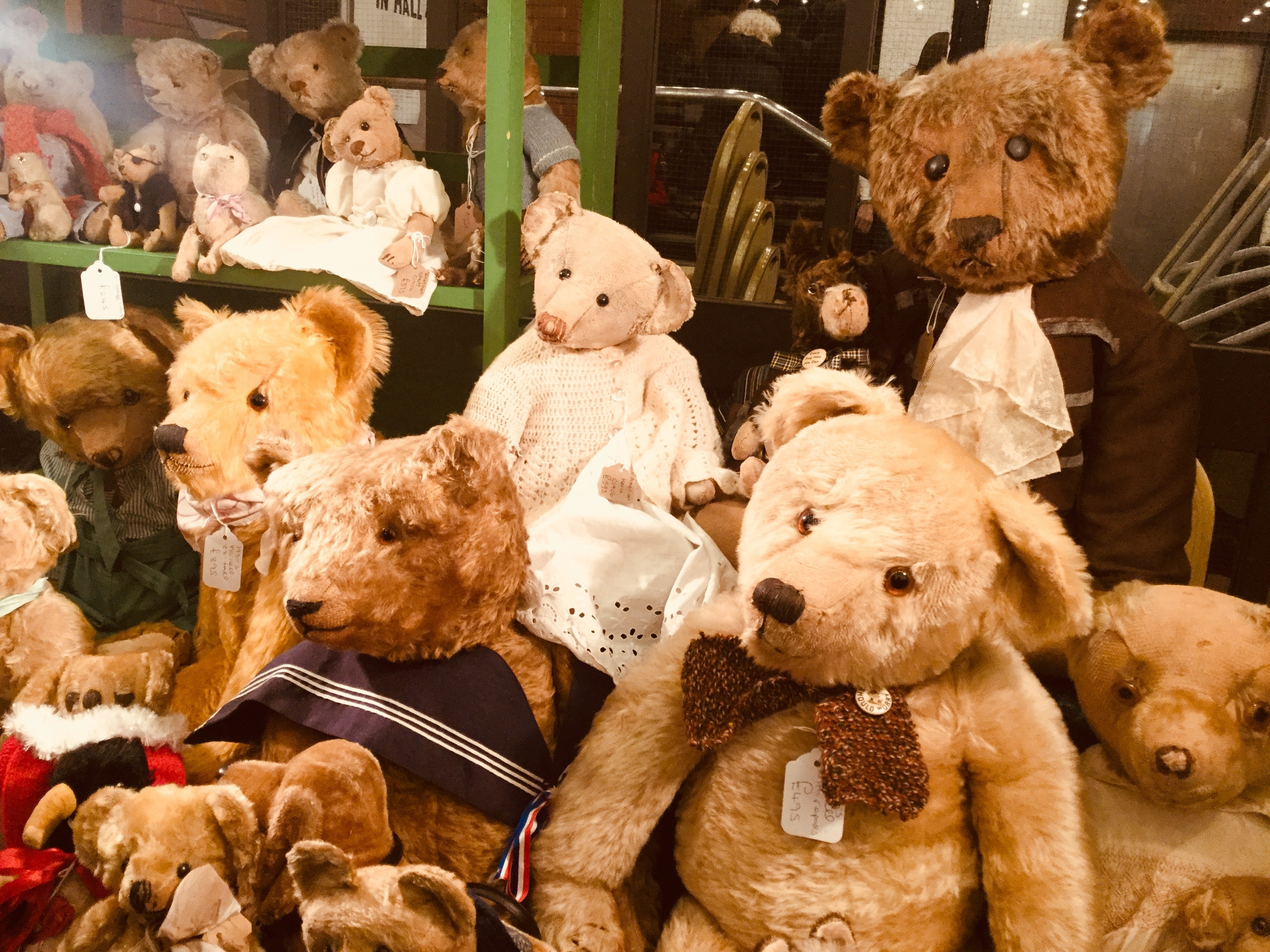 Image result for Teddies Festival kensington