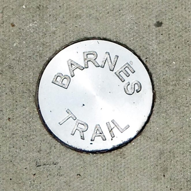Barnes Trail disc