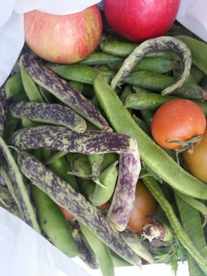 green beans, fruit, vegetables, local,