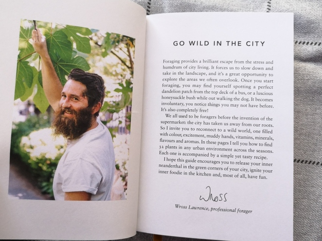 the urban forager, wross lawrence, new books, hoxton mini press