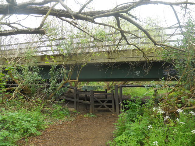 wandle meadow nature park, nature reserve, underpass