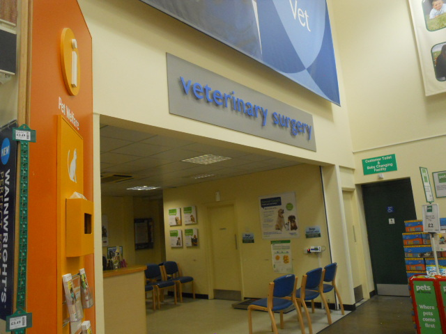 pets at home, vets, veterinary surgery