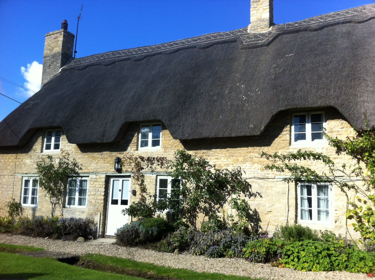 Thatched writing a business