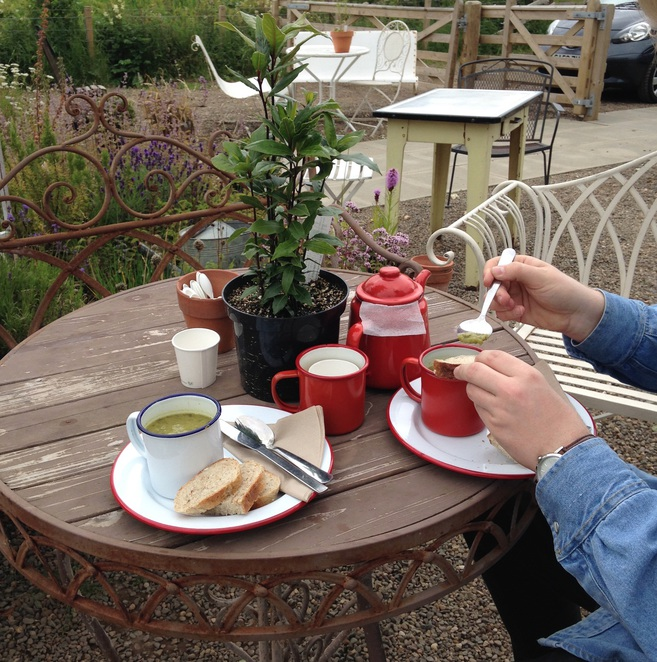 nature food lunch coffee brunch nature edinburgh explore layout