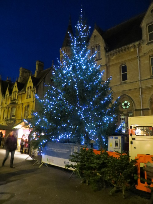 oxford, christmas, market, tree