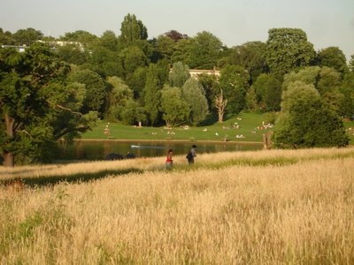 Hampstehad Heat