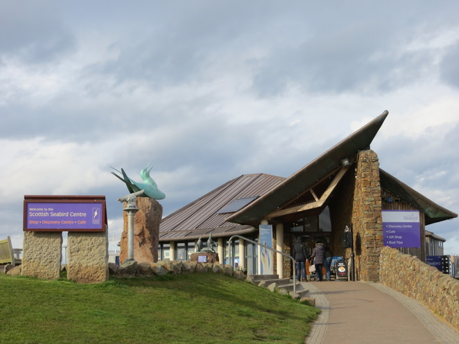 seabird centre, north berwick, scotland