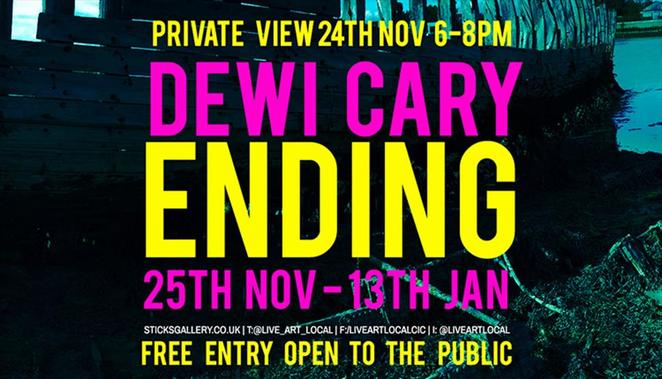 dewi cary ending exhibition, art exhibition, sticks gallery, gosport
