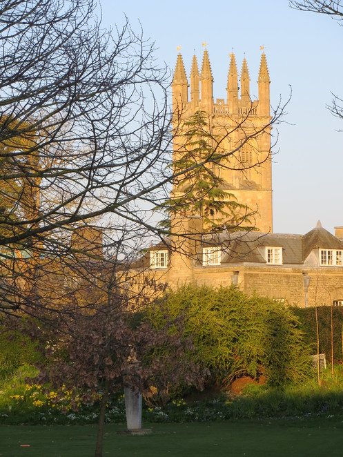 magdalen, college, oxford, spring