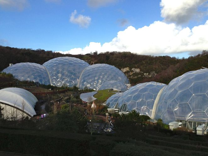 eden project, cornwall, education, plants, nature, forest, conservation, charity, biomes, domes, mediterranean