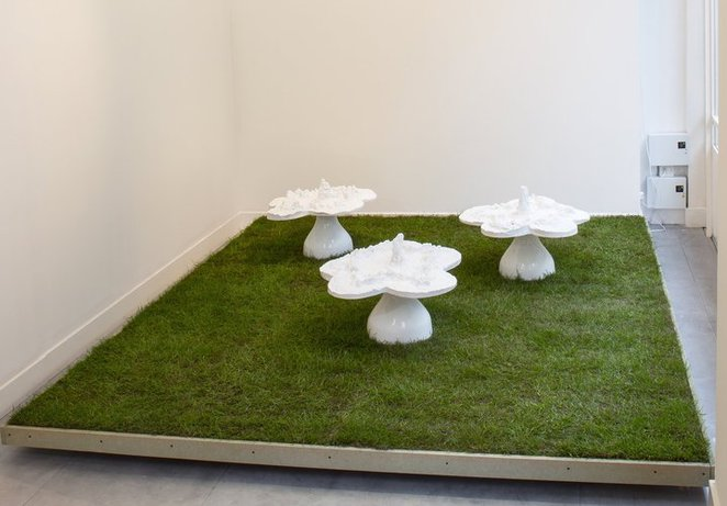 helen Chadwick, piss flowers, richard saltoun