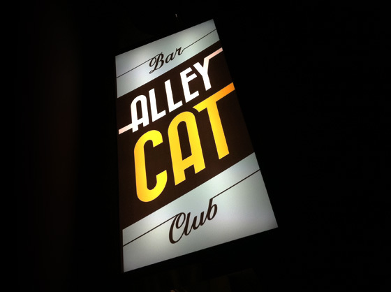 The Alleycat
