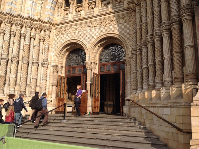 Natural history museum, staff, queue, steps, architecture