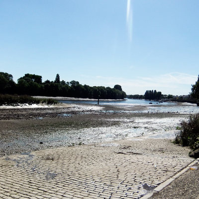 Chiswick Eyot and the River Thames