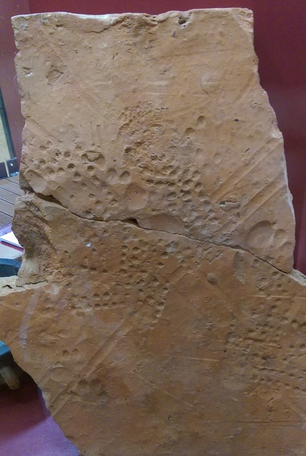 roman footprints brading isle of wight wet clay