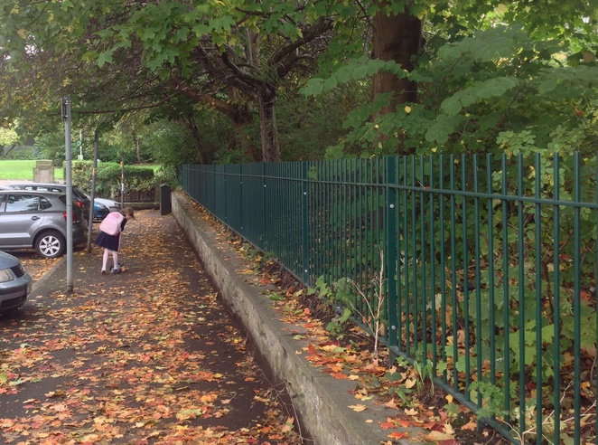 Conkers, horse chestnut, park, autumn little girl