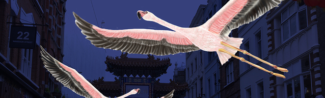 Flamingo Flyway, Lumiere light festival, London