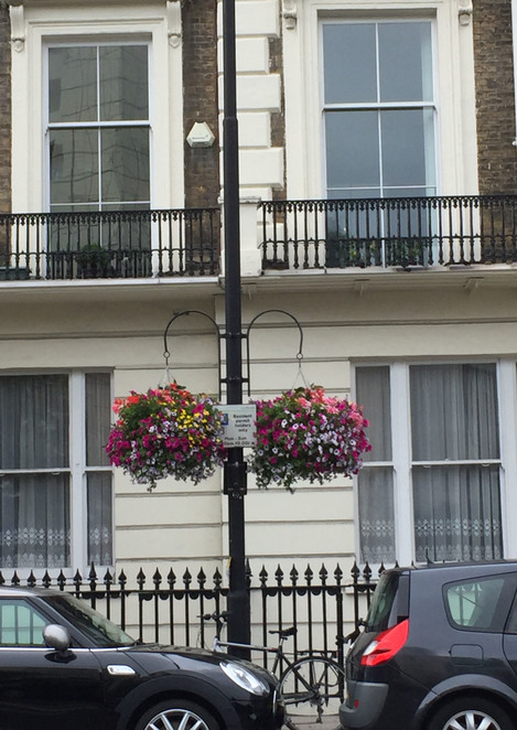 Londoninsummer,hangingbaskets,colourfulflowersinbaskets,hydeparklondon,kensington,nottinghill,paddingtonlondon