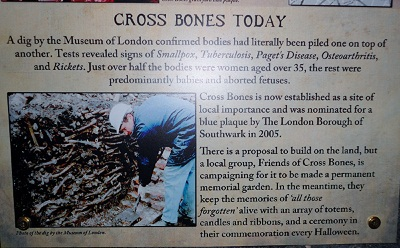 Information about the Dig by the Museum of London
