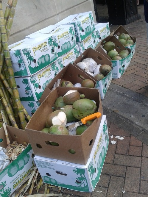 International Food Fair, young coconuts, coconuts,