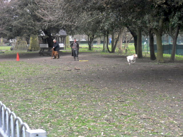 kennington Park, dog area