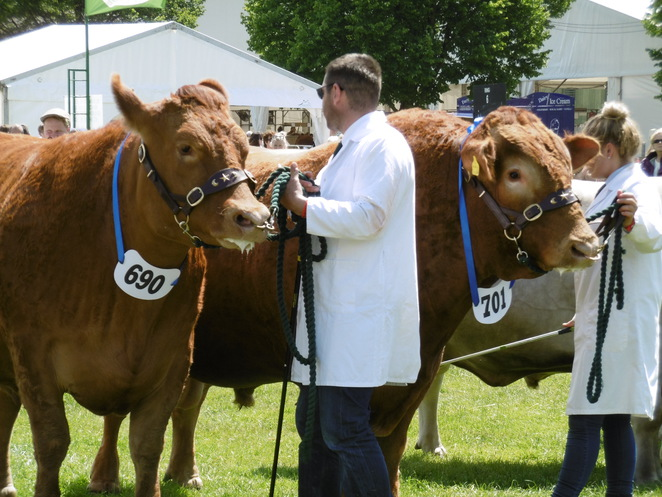 Royal Three Counties Show, Malvern
