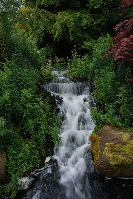 Meditation, waterfall, botanics, edinburgh