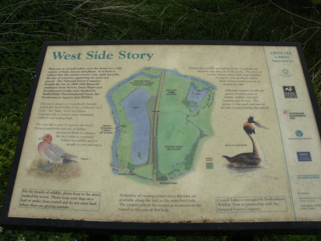 Croxall, lakes, birds, wildlife