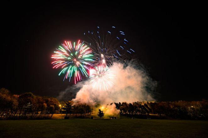 Tamworth Fireworks